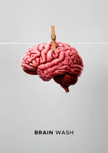 2704 Brain